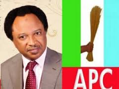 APC  suspends Senator Sani Indefinitely