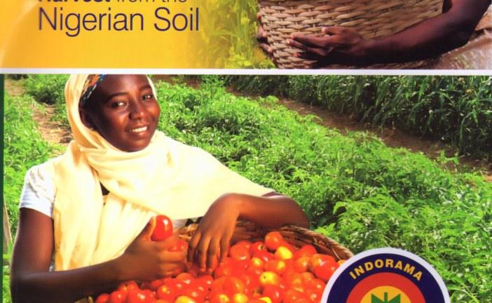 Indorama Eleme Petrochemicals Corporate Social Responsibilities In Focus