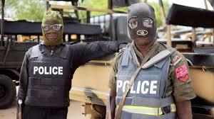 Police sergeant killed in Boko Haram attack in Borno