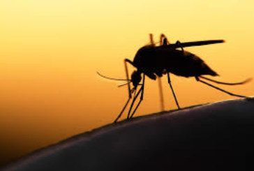 Rivers State has achieved 7.3 malaria prevalence – Commissioner