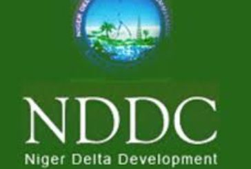 Forensic audit: NDDC sent key staff on compulsory leave