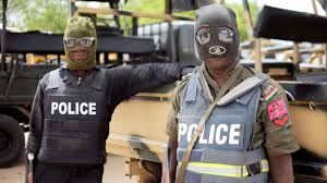 Police sergeant killed in Boko Haram attack in Borno