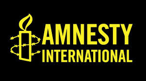 Presidency Frowns At Report By Amnesty International On Nigerian Security Agencies